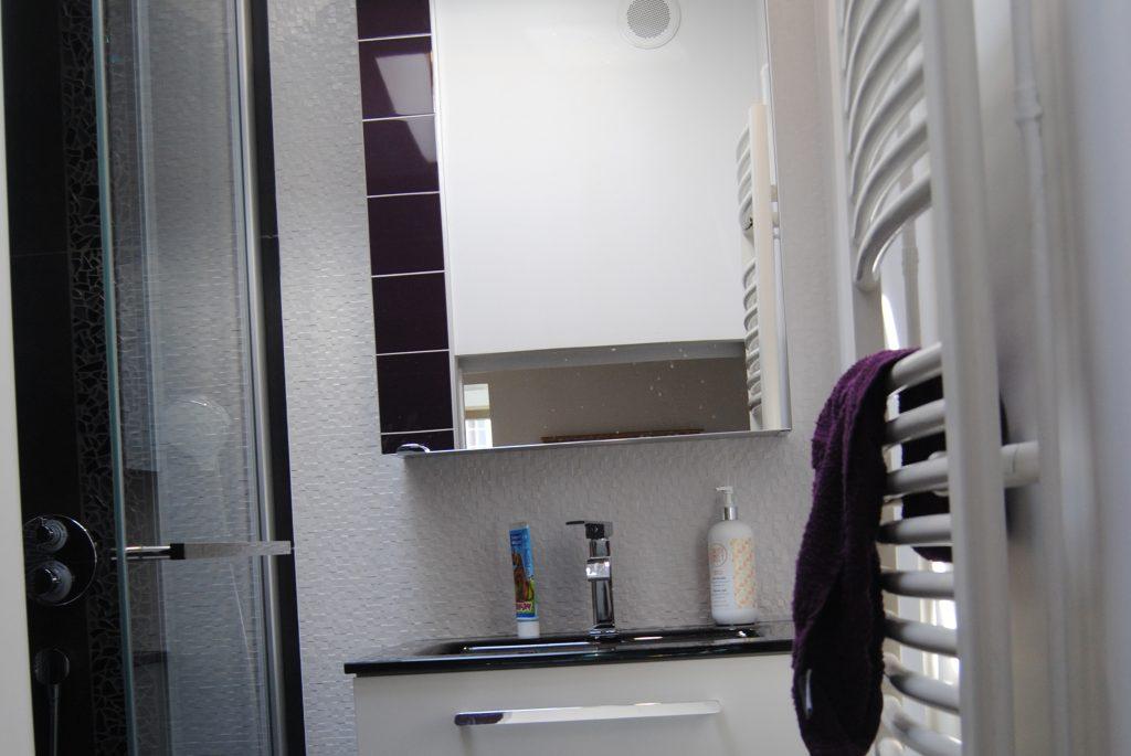 Espace lavabo avec miroir, cabine de douche et porte serviette
